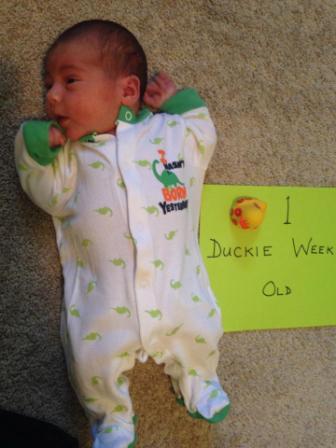 Duckie One Week